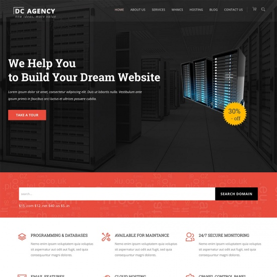 WordPress Theme for Hosting Services, SEO and Consultancy