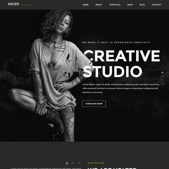 Volter - Responsive Creative & Minimal WordPress Theme