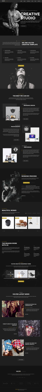 Volter - Responsive Creative & Minimal WordPress Theme