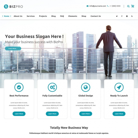 BizPro - Business WordPress Theme + RTL