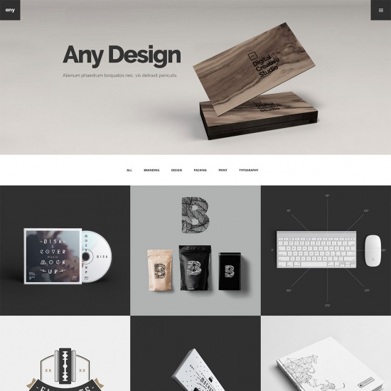 Any - Designer Portfolio WordPressTheme