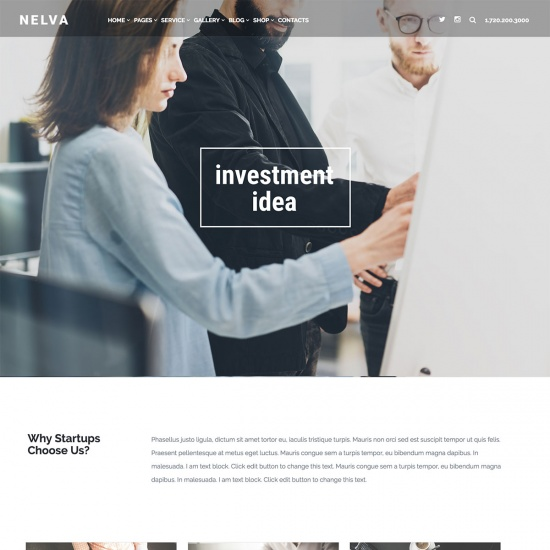 Nelva - Startup Business WordPress Theme