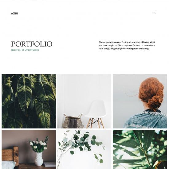 Ashi - Minimal Photography WordPress Theme