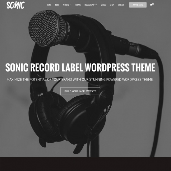 Sonic - Music Industry WordPress Theme